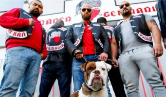 Турция платила боксерскому клубу вГермании запреследование оппонентов Эрдогана
