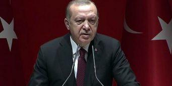 Эрдоган обвинил турецкую медицинскую ассоциацию в терроризме