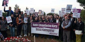 За первый месяц 2018 года в Турции убито 28 женщин