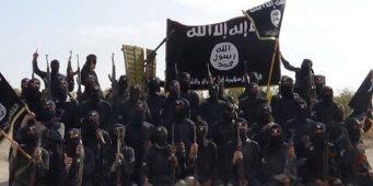 В Турцию вернулись 900 террористов ИГИЛ