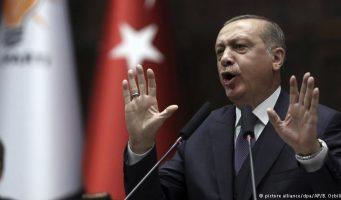 Эрдоган открыто угрожает Франции террористами