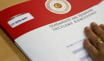 Статистика комиссии OHAL: 310 обращений из 12 тысяч удовлетворены