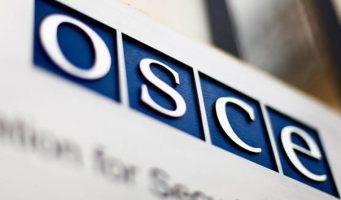 ОБСЕ проконтролирует прозрачность выборов в Турции