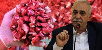 Турецких граждан накормили «бешенной говядиной»
