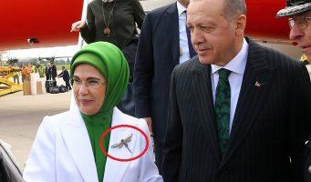 Жена президента Турции отправилась в Великобританию с брошью в 15 тысяч долларов