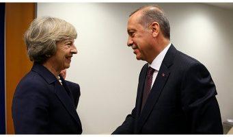 Британский депутат об Эрдогане: До тошноты. Он диктатор, создавший жестокий и истязательный режим