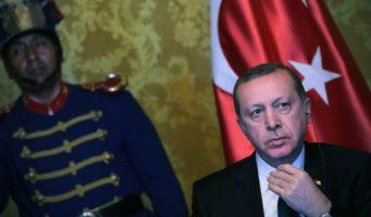 Германский политик из партии Зелёных, которой угрожали убийством: Эрдоган «запудрил мозги» туркам