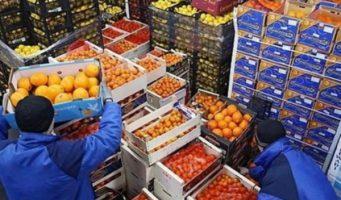 Некогда сельскохозяйственная Турция теперь вынуждена импортировать практически все продукты