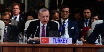 Желание Турции войти в БРИКС в настоящее время невыполнимо