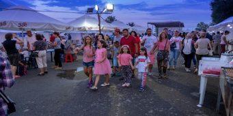 Добровольцы движения Хизмет передадут собранные с благотворительного фестиваля средства в помощь пострадавшим от лесных пожаров в Греции