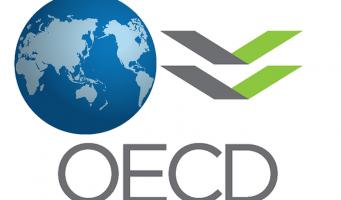 ОЭСР ухудшила прогнозы роста экономики Турции