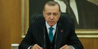 Эрдоган на фоне репрессий предложил ученым вернуться из эмиграции