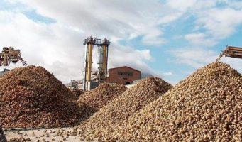 На средства от продажи сахарных заводов правительство ПСР строит тюрьмы