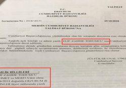 Правозащитники узнали о расследовании турецкой прокуратуры в отношении 4-летней девочки