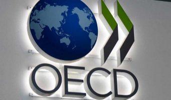 ОЭСР: Темпы роста экономики Турции сократятся в 2019 году