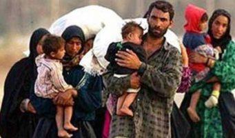 55 тыс. сирийцев получили турецкое гражданство за последние 7 лет