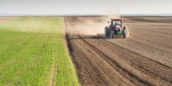 Проблемы сельского хозяйства: Оборудование не закупается, идут разговоры о прекращении производства