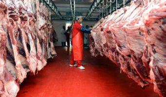 Правительство ПСР завезет из Сербии 5 тысяч тонн мяса