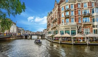 Более тысячи хорошо образованных турок переехали в Нидерланды в прошлом году