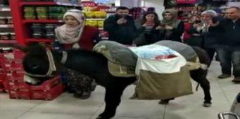 Протест жителя турецкого города: На осле за покупками