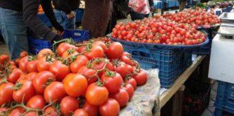Россельхознадзор задержал партию томатов из Турции и отправил назад