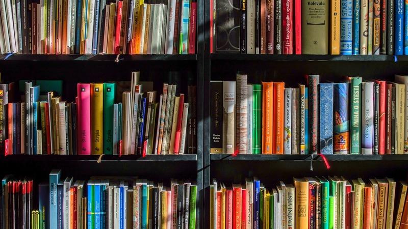 Опрос: 61% турок не читают книг