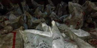 «Люди обеднели настолько, что стали продавать уголь, полученный в качестве благотворительной помощи»