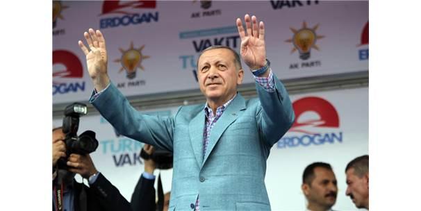 СМИ Германии: Эрдоган стал овощником