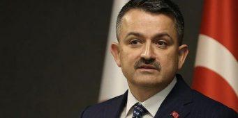 Ешьте по сезону: Министр нашел виновных в росте инфляции