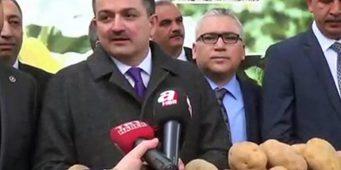 Скандал на фоне отмены пошлин на картофель: Министр сельского хозяйства Турции оказался консультантом крупной картофельной компании
