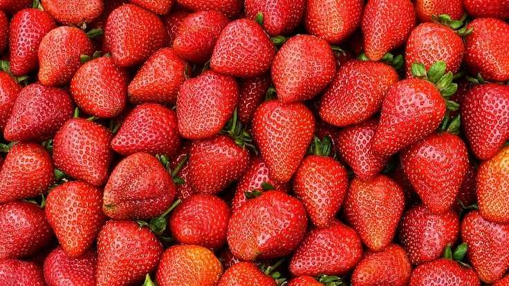 Россия вернула Турции зараженные томаты и клубнику