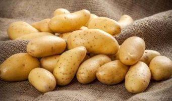 По росту цен на картофель Турция на втором месте в мире