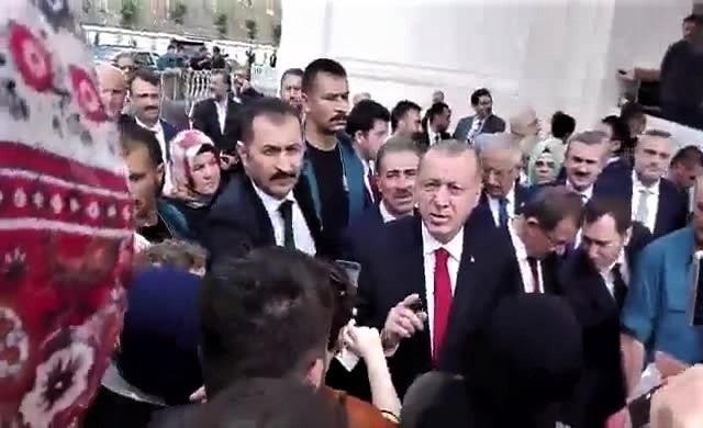 Молодая женщина с двумя образованиями пожаловалась Эрдогану на отсутствие работы