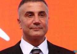 Сторонник ПСР и крупный мафиози предложил амнистировать осужденных за употребление наркотиков