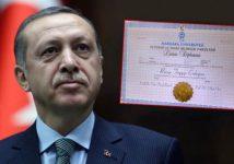 Тему фальшивого диплома Эрдогана перенесли в ЕСПЧ