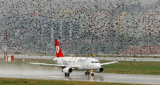 Новый аэропорт Стамбула не мог принимать самолеты
