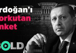 Президентскую систему правления в Турции поддерживают лишь 37% турок