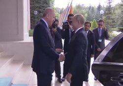Эрдоган встретил Путина словам «рад знакомству»