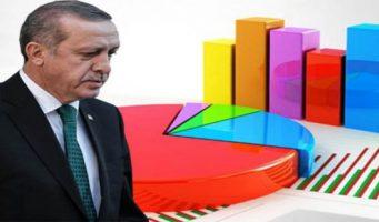 Рейтинг одобрения Эрдогана резко упал с прошлого года
