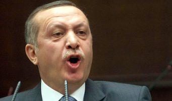 Дело о поддельном дипломе. Активисты призывают привлечь Эрдогана к ответственности