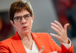 Министр обороны Германии: Турция аннексировала территорию Сирии