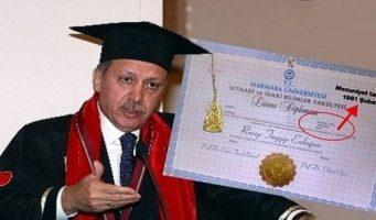 О фальшивом дипломе Эрдогана узнают в Европе