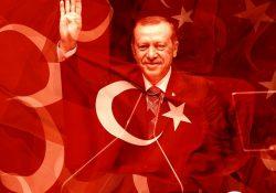 Турция заняла 110-е место в мировом Индексе демократии