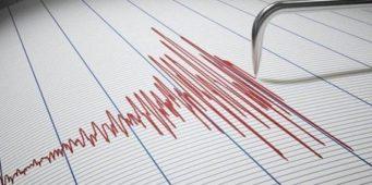Как защитить свой дом от землетрясений? Необычный способ вызвал широкое обсуждение