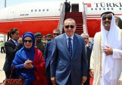 16 служебных самолетов. Эрдоган обошел лидеров Германии и Франции