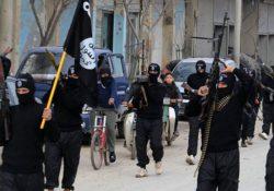 Предприятия ИГИЛ работали в Турции