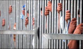 Турецкие адвокаты: Коронавирус распространяется, приостановите исполнения наказаний