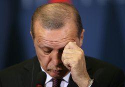 Данные ОЭСР опровергают заявления Эрдогана о большом количестве коек интенсивной терапии