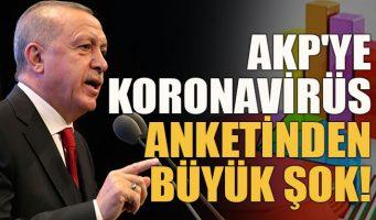 Турки недовольны тем, как правительство Эрдогана борется с коронавирусом