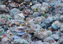 Турция – центр пластиковых отходов Европы